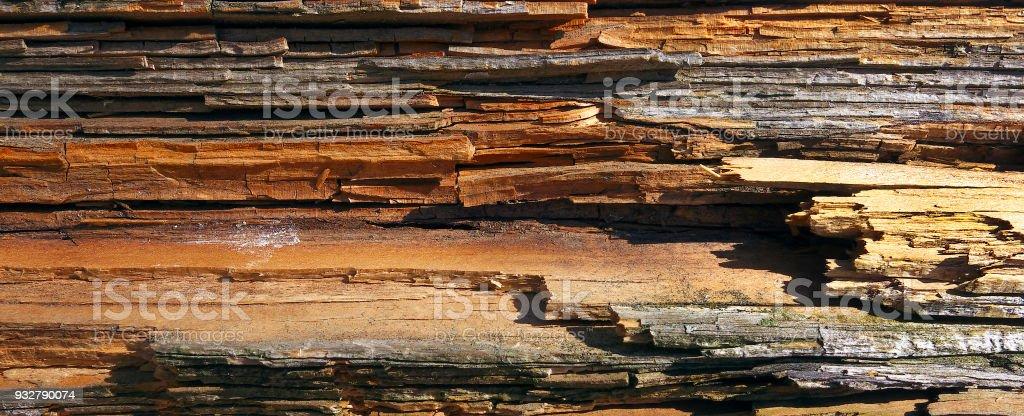 Weather damaged wood. stock photo