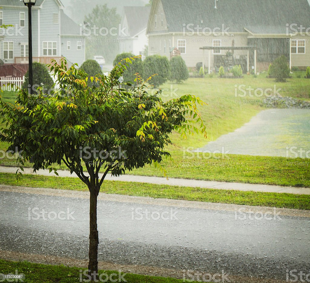 Weather: Torrential Rain During Summer Storm stock photo