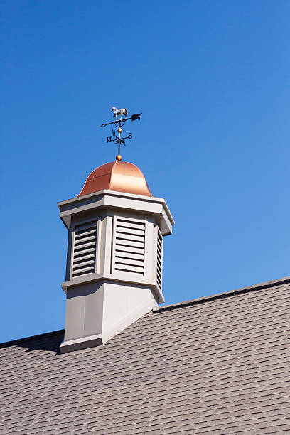 weather vane on copper cupola - cupola stock pictures, royalty-free photos & images