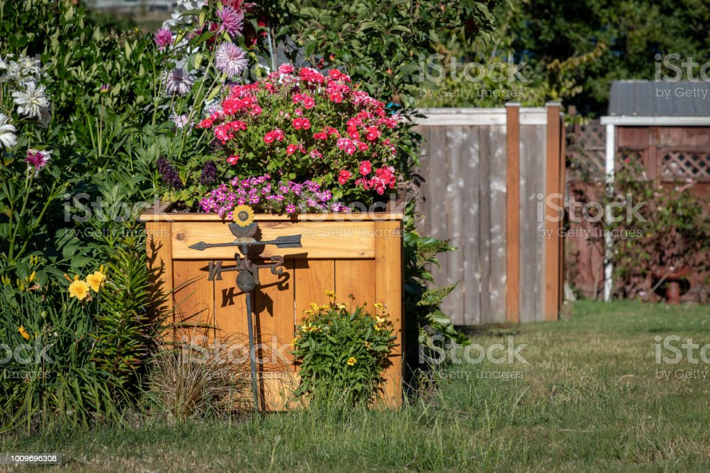 Weather Vane Yard Art in Front of Planter Box with summer blooming...
