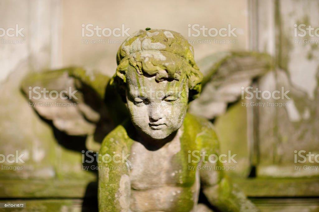 Weathered angel sculpture on Melaten Graveyard stock photo
