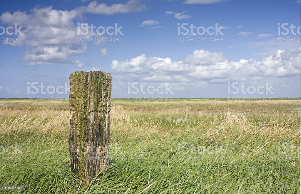 Weathered beach pole stock photo