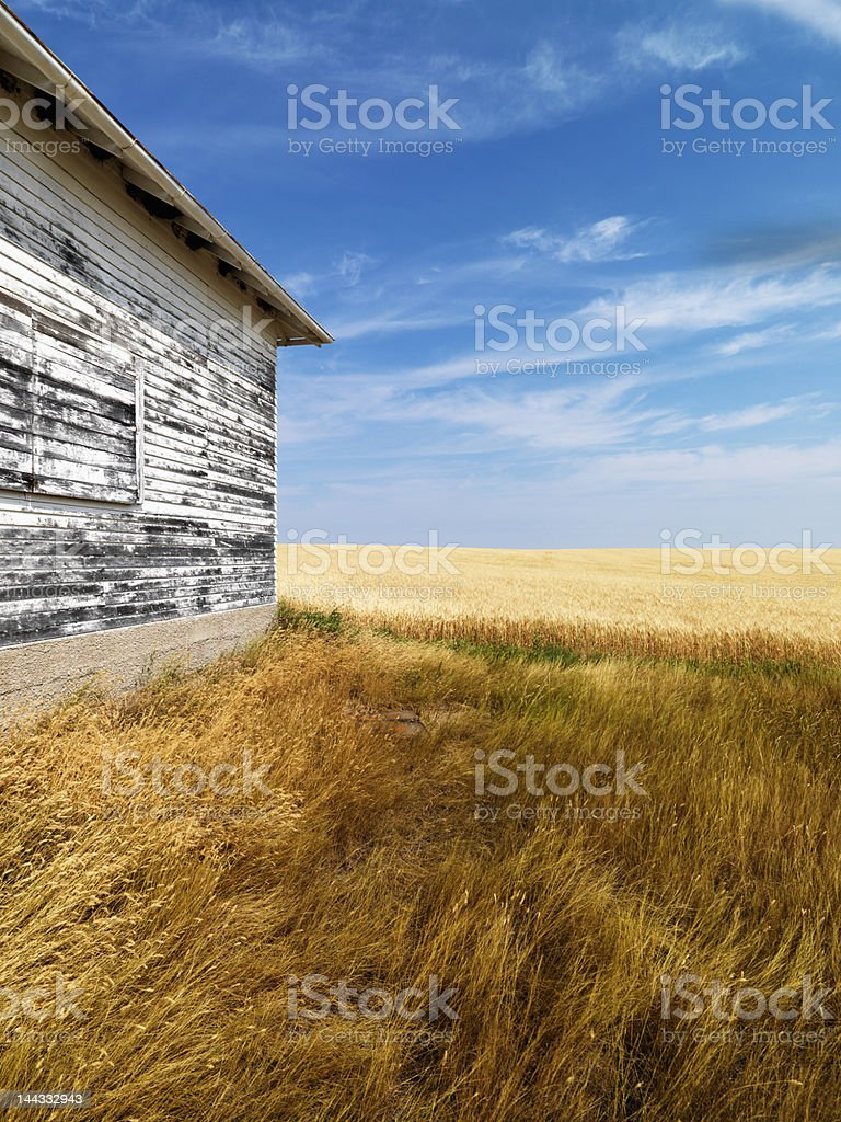 Weathered building and grassland. royalty-free stock photo