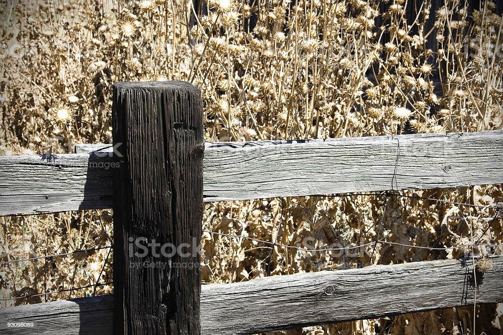 Weathered Fence royalty-free stock photo
