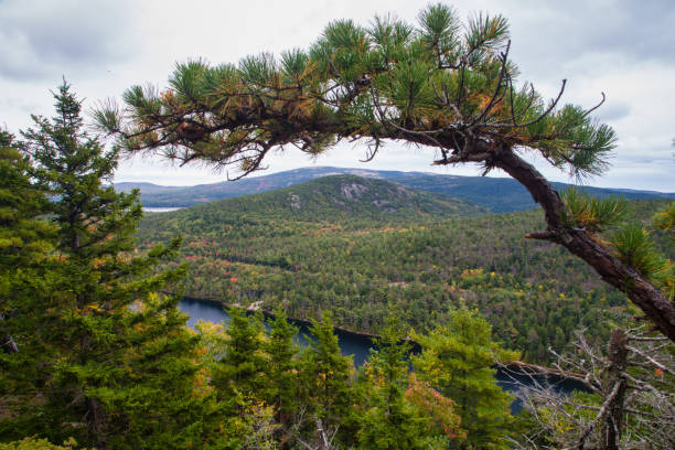 Weathered Granite and Scenic View, Beech Mountain Trail in Acadia National Park, Maine stock photo