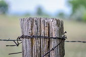 istock Weathered old barbed wire fence post 1124598352