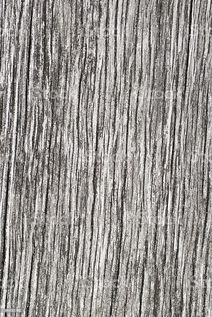 Weathered old gray cracked wooden background royalty-free stock photo
