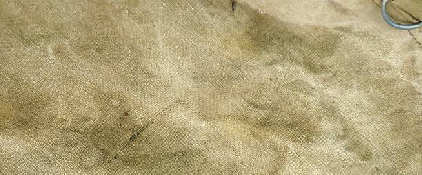 Weathered Old Pale Green Trap Fabric Background stock photo