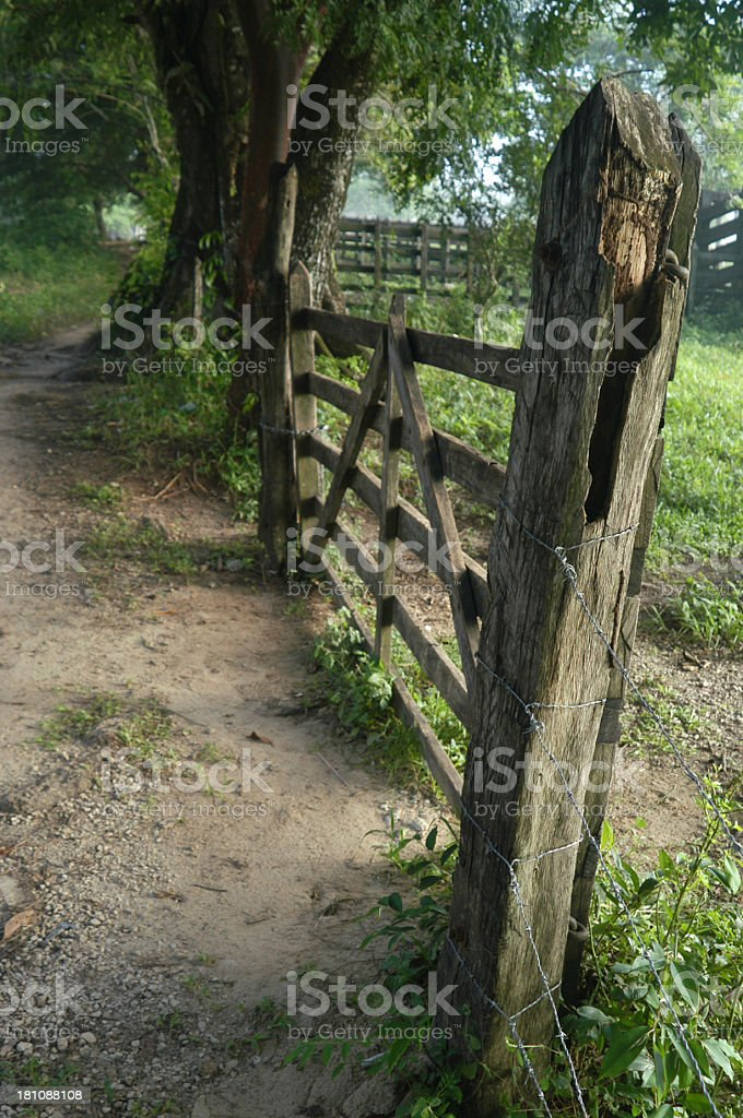 Weathered Old Wooden Fence Forest Path Scene w Field royalty-free stock photo