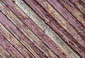 weathered old wooden fence in the garden