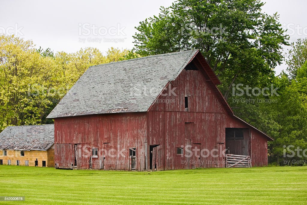 Weathered red barn Green field Trees stock photo