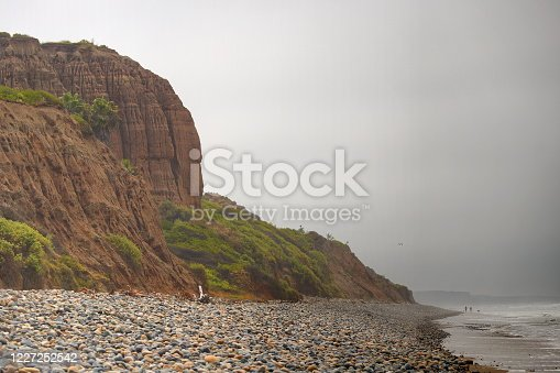 Eroded cliffs with vegetation, and the waves of the Pacific Ocean touching a rocky shoreline on a misty, overcast day at the beach.
