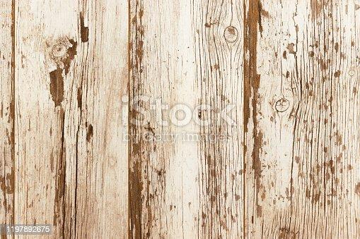 913504776 istock photo Weathered White Wood Panel - Wood Plank Texture Background 1197892675