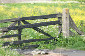 istock Weathered wooden fence in the countryside 1221017832