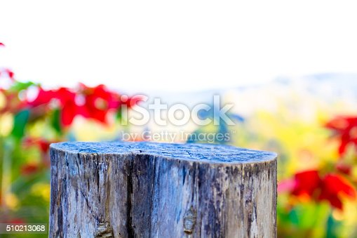 1124475954 istock photo Weathered wooden logs with natural pattern vintage background 510213068