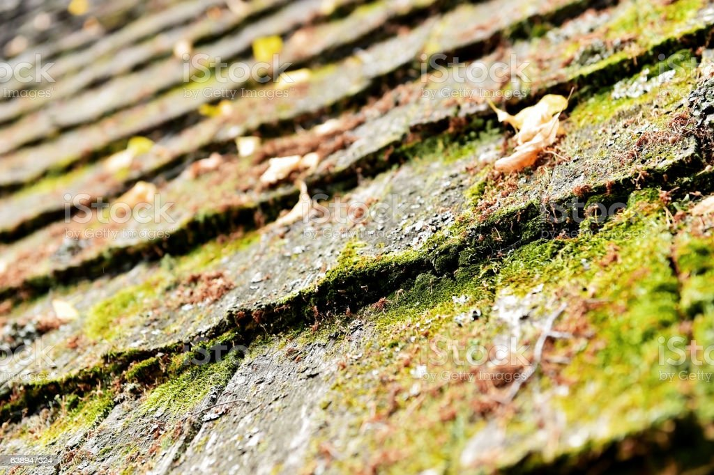 Weathered wooden roof tiles stock photo