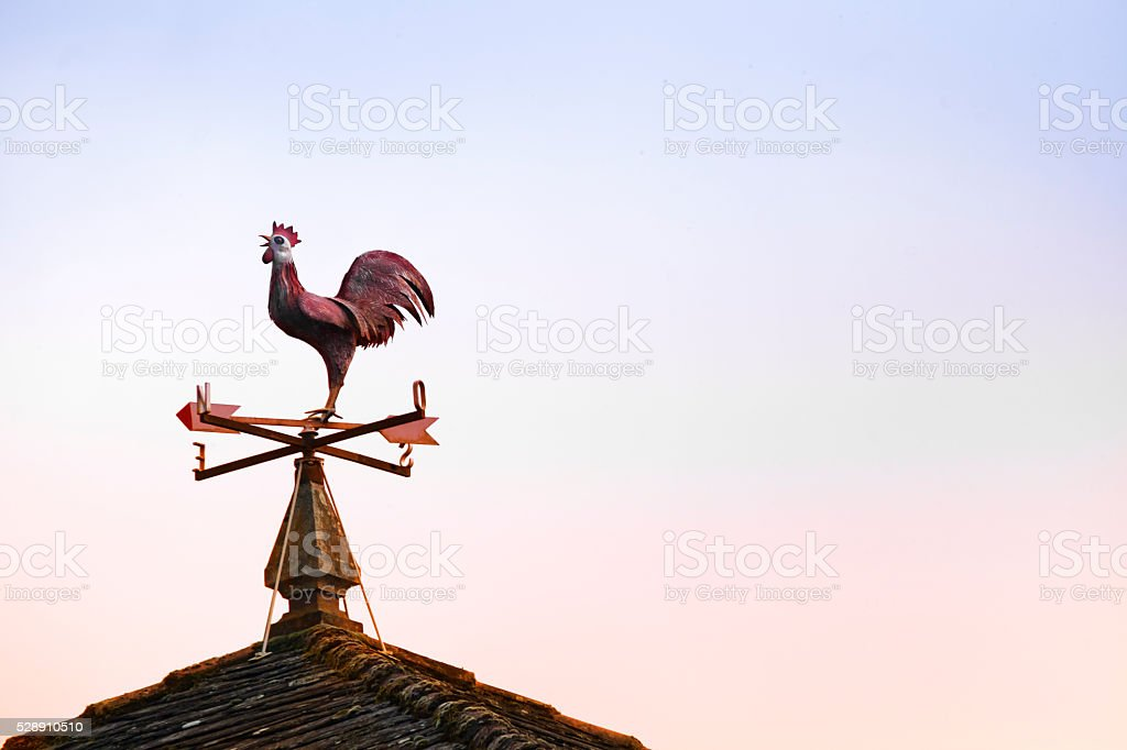 Weathervane in rooster shape, sunset background. stock photo