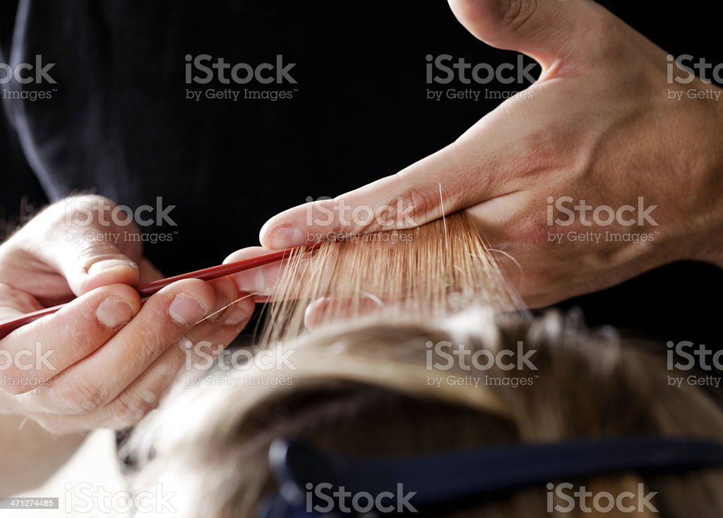 Weaving Hair for Highlights stock photo