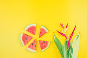 istock web banner and minimal flat lay creative design for group of summer fruits with fresh watermelon,pine apple and heliconia tropical flower on pastel color background 1144587574