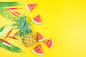 istock web banner and minimal flat lay creative design for group of summer fruits with fresh watermelon,pine apple and heliconia tropical flower on pastel color background 1160571330