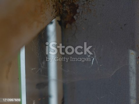 web in the corner of a metal fence, Russia