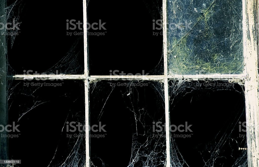 Webs stock photo