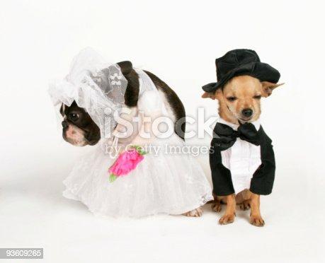 172144035 istock photo wedded bliss 93609265