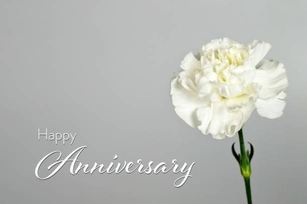 Hochzeits-Jubiläumskarte mit weißer Nelkenblume – Foto