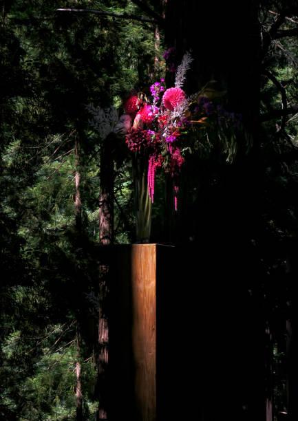hochzeit blumenstrauß auf einer plattform in einem redwood wald in corralitos, ca - redwood hochzeit stock-fotos und bilder