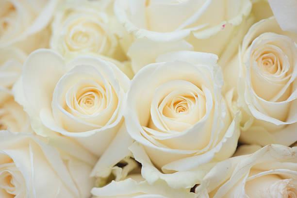 Wedding bouquet of white flowers. White roses. stock photo