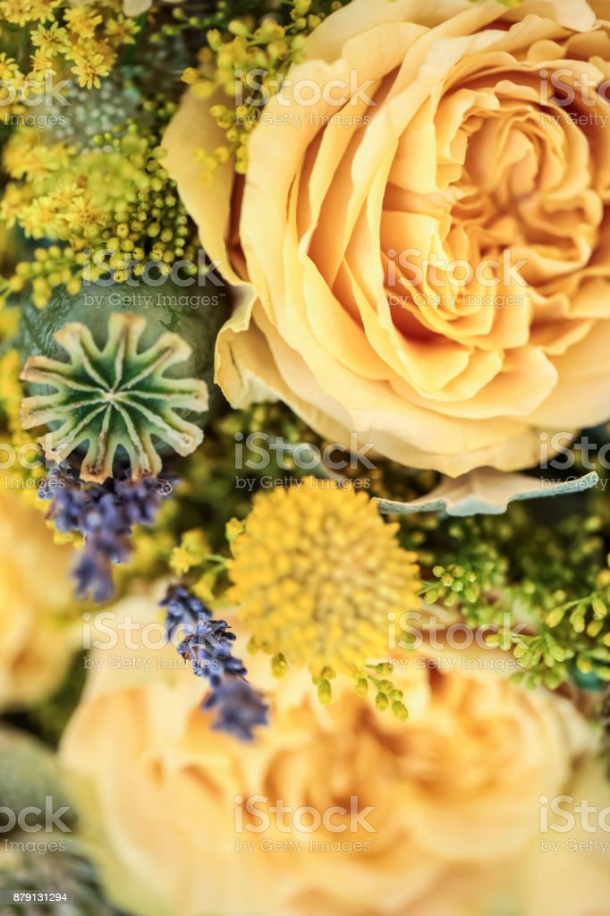 Wedding Bouquet - With billybutton daisy, lavender, succulent plant, cactus stock photo