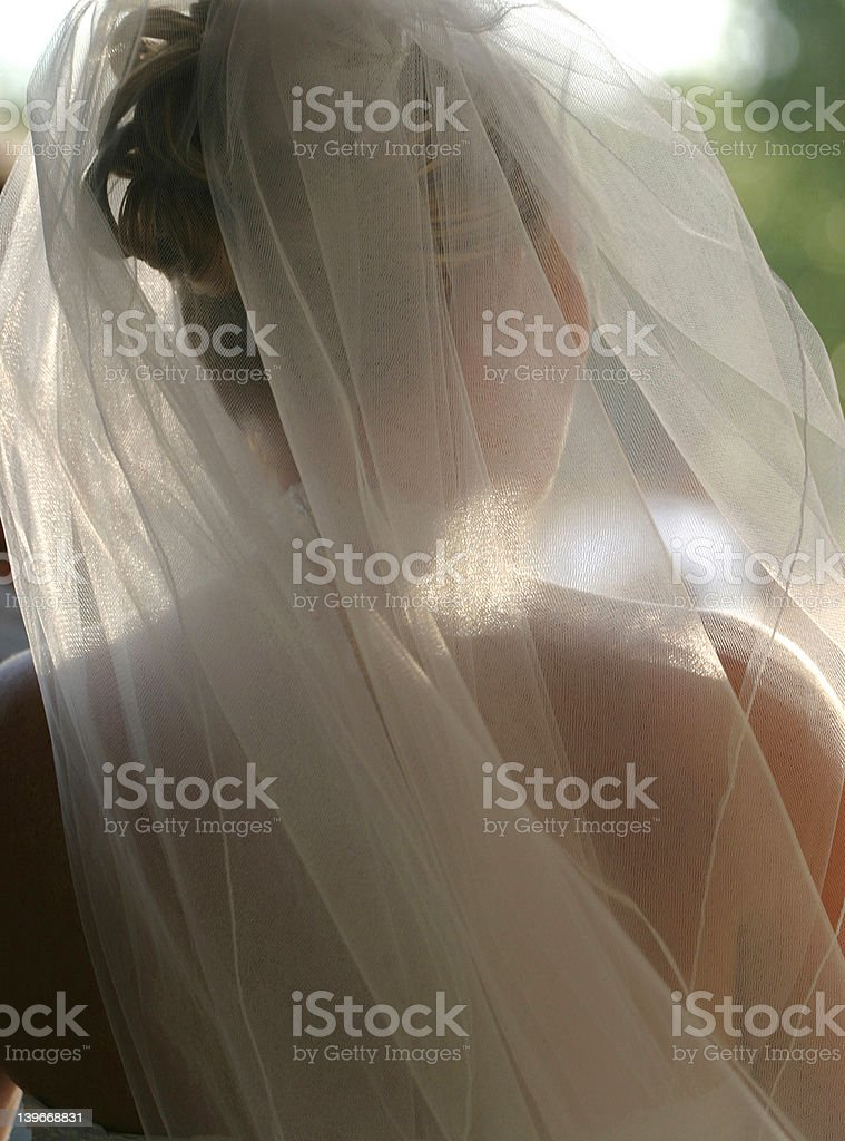 Wedding Bridal Veil stock photo