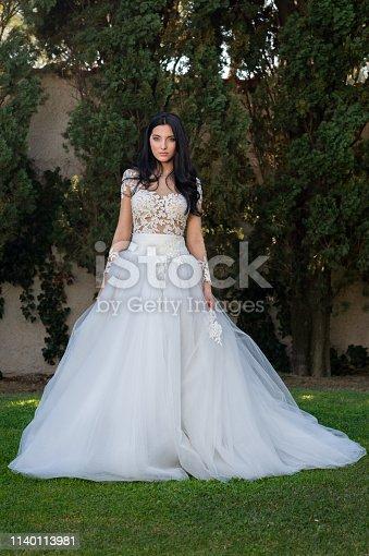 506798692istockphoto Wedding bride in outdoor 1140113981