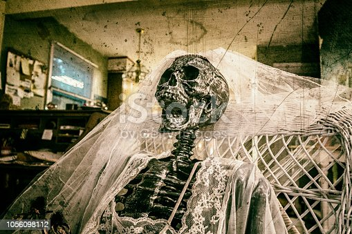 A skeleton bride apparently suffering from insomnia - perhaps after having been left at the altar some time ago? - is perched silently with eyes (sockets) wide open in a white caned wicker rocking chair in a grungy old parlor living room. She appears to have been sitting here for ages; but how nice that she's still wearing her white wedding veil and a sexy, thin-strapped, white gauzy material honeymoon lingerie slip.