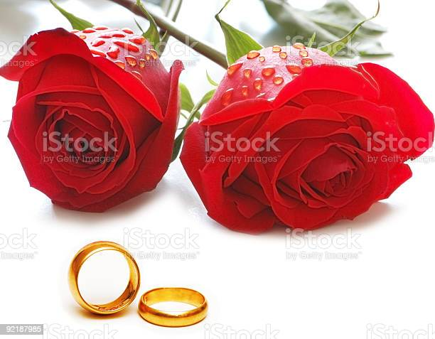 Wedding concept with roses and rings picture id92187985?b=1&k=6&m=92187985&s=612x612&h=dgpr3bwfyszezcjbj9iczredawnxl acpdaorsb2hfy=