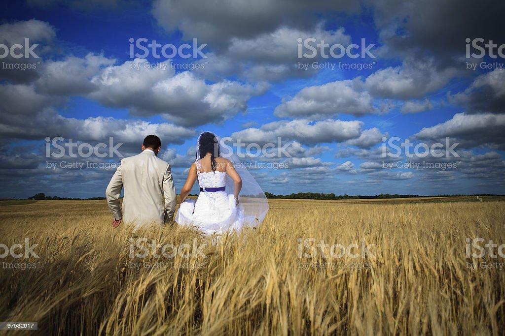 wedding couple against blue sky among rye field simbolizing fertility royalty-free stock photo