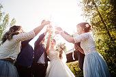 istock Wedding couple and groomsmen with bridesmaids 1002778398