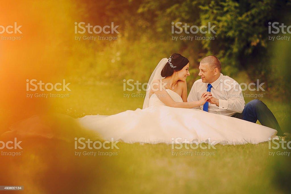 Wedding Couple Hd Stock Photo Download Image Now Istock