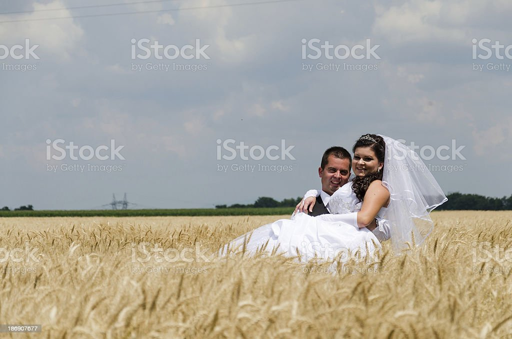 wedding couple in a wheat land royalty-free stock photo