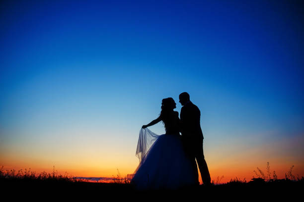 wedding couple in field. Bride and groom together. stock photo
