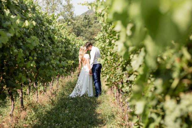 Wedding couple in vineyard