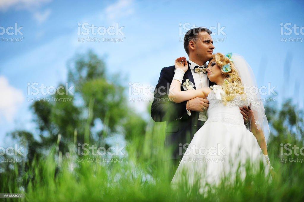Wedding couple on nature royalty-free stock photo