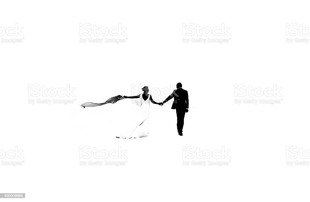 Wedding couple silhouette vector art illustration