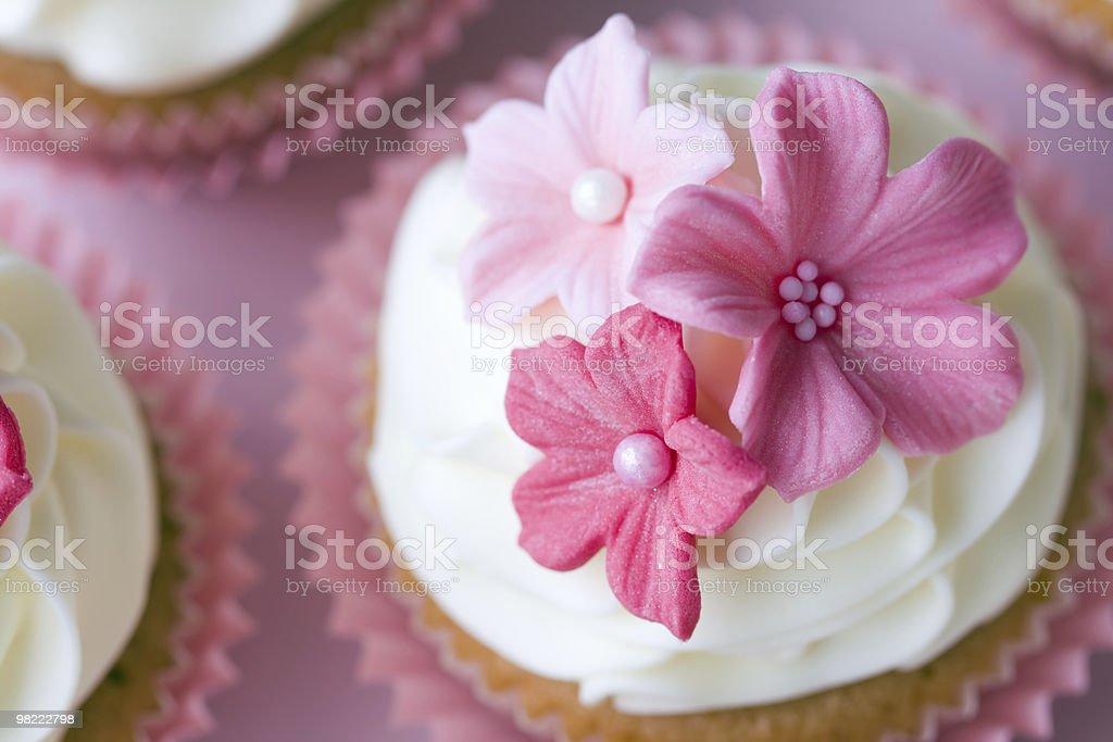 웨딩 컵케이크 2개 royalty-free 스톡 사진