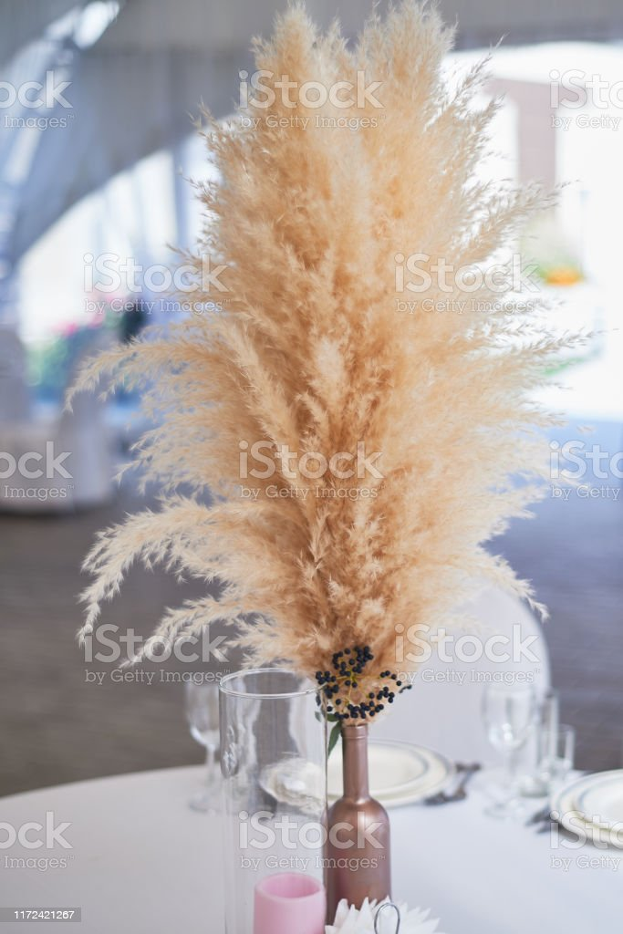 Photo Libre De Droit De Decoration De Mariage Dans Le Modele De Boho Couleurs Claires Dans La Tente Table De Mariage Decoree Dun Vase Dherbe De Pampas Style Boho Banque D Images Et