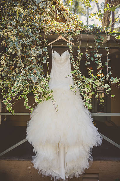 Royalty free wedding dress pictures images and stock photos istock wedding dress stock photo junglespirit Gallery