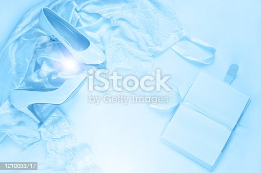 917262406 istock photo Wedding flat lay in classic blue color toning. Bridal details concept, silk dress, notebook mockup, banner blog website. 1210033717
