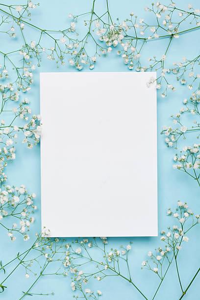 wedding floral mockup with paper note, flowers gypsophila. flat lay. - flower bouquet blue and white bildbanksfoton och bilder