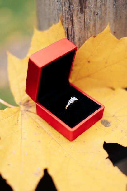 hochzeits-goldringe auf einem gelben ahornblatt - herbst hochzeitseinladungen stock-fotos und bilder