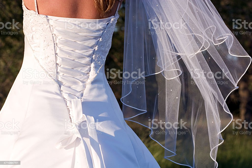 Wedding Gown and Veil royalty-free stock photo